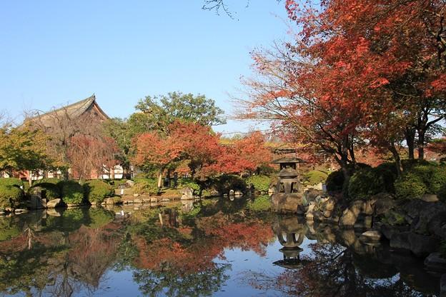 IMG_4485東寺(教王護国寺)・紅葉と水面に写り込む紅葉