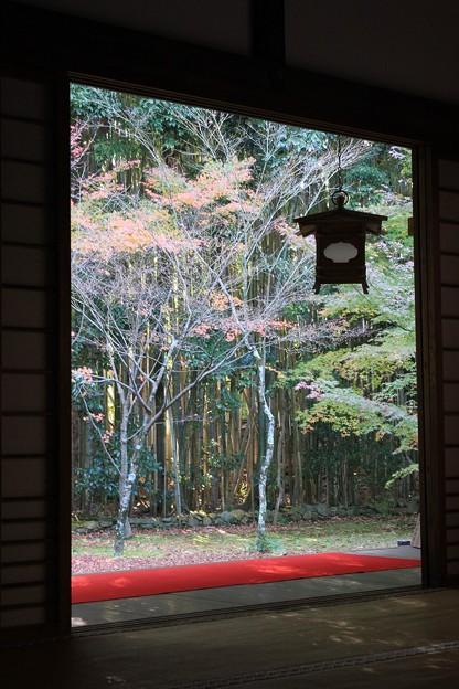 IMG_4701大徳寺・高桐院・額縁風