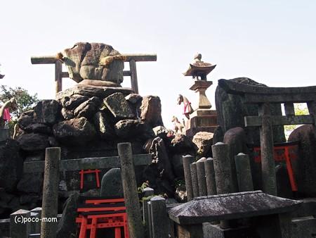 京都伏見稲荷2014年05月04日_P5040735