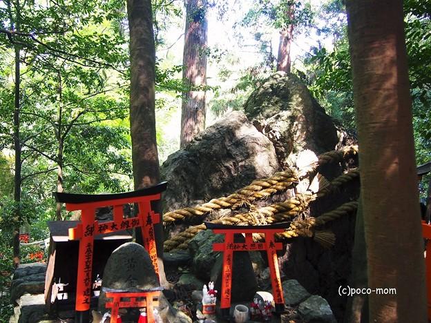 京都伏見稲荷2014年05月04日_P5040761