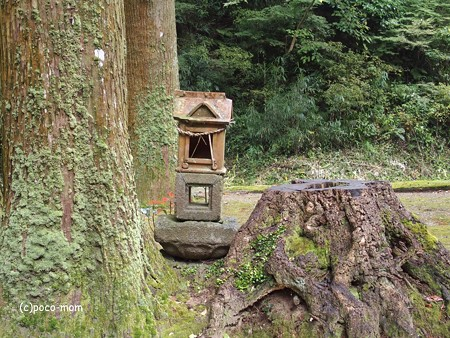 雷山雷神社 中宮 PA120386