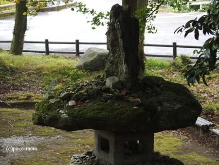 雷山雷神社 PA120394