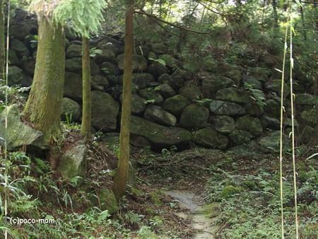 雷山雷神社 PA120408