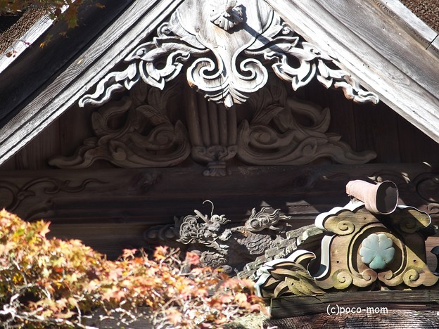 Photos: 光台院 本堂破風飾りPB030560