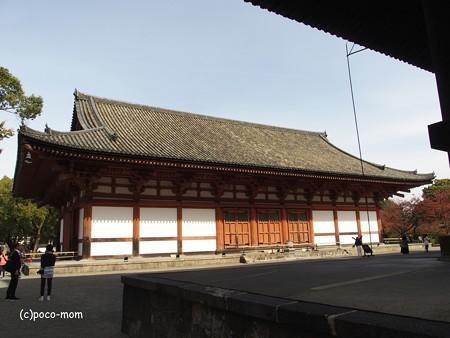 東寺講堂 PB010053