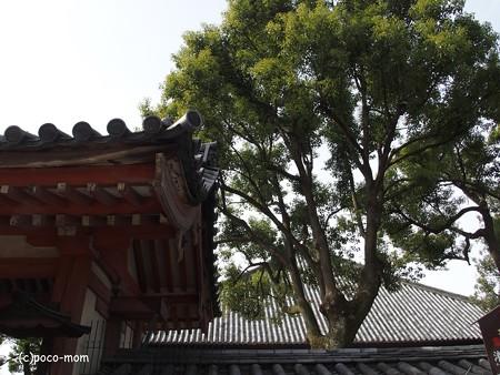 東寺灌頂院