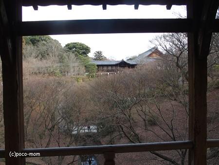 東福寺 P1110127