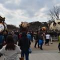 Photos: 上野 藝祭神輿 DSC_0878