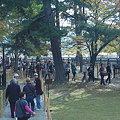 Photos: 奈良 興福寺北円堂拝観行列