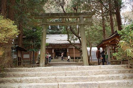 奈良松尾神社