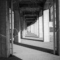 Photos: 無限回廊