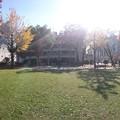写真: 【GoogleCardBoardカメラ用】ふたば公園
