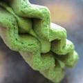 写真: 緑が濃い
