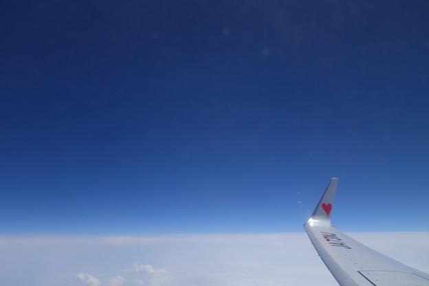 We love Sky ?