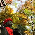 徳満寺 紅葉とお地蔵さま