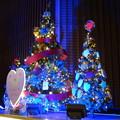 Photos: Christmas tree
