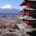 写真: Cool Japan