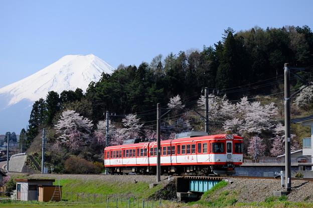 写真: 富士急行