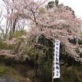 写真: 大山津見神社