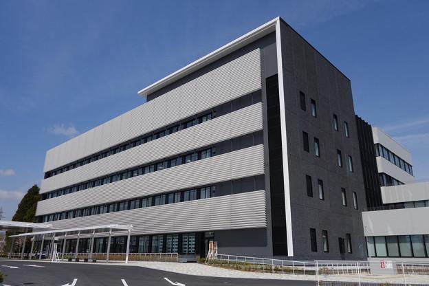 稲敷市役所 新庁舎