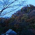写真: 20091212_164920