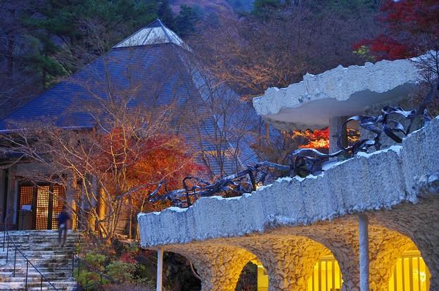 2015富士山麓の秋142