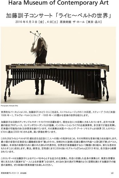 ライヒ / ペルトの世界 加藤訓子 2016 in 東京 原美術館