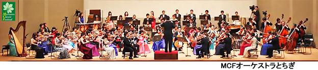 写真: MCFオーケストラとちぎ
