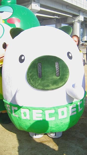 写真: 福岡県 エコトン