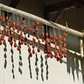 Photos: 故郷