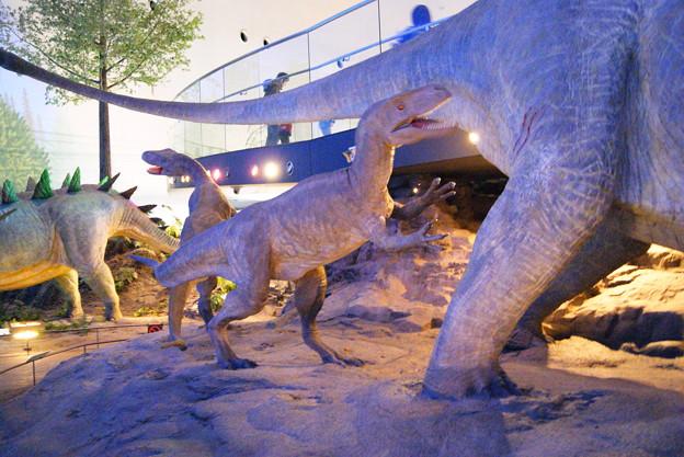 恐竜 (3)