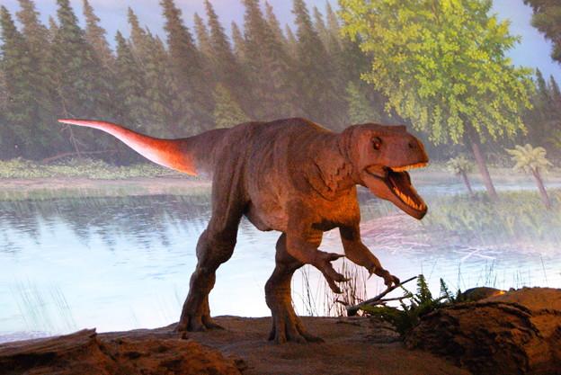 恐竜 (4)