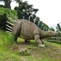 写真: ケントサウルス