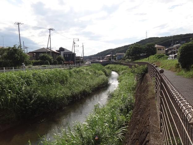140711 鶴見川