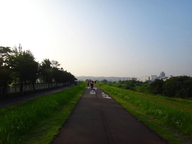 写真: 140731 多摩川