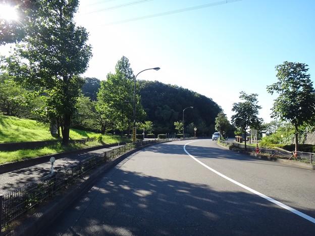 140806 真光寺公園