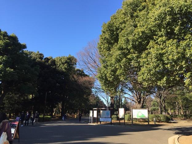 160109 代々木公園