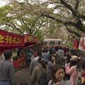 Photos: 参道午後3時