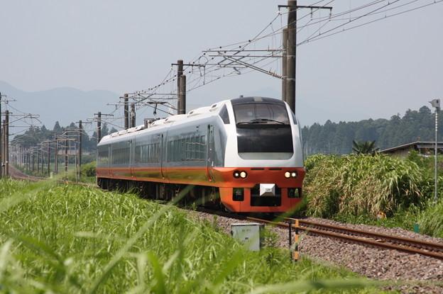 E653系K353編成 9741M 集約臨時列車 (4)