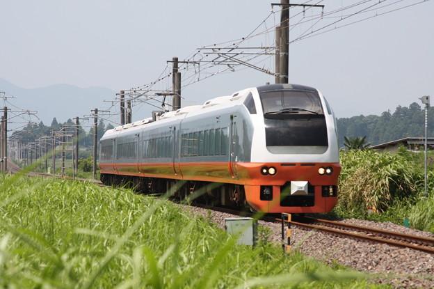 E653系K353編成 9741M 集約臨時列車 (5)