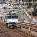 Photos: 単75レ EF65 2057