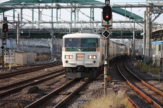 Photos: 185系B5編成 修学旅行臨 (1)