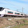 E657系K11編成 1076M 特急ときわ76号 品川行
