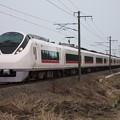 E657系K15編成 1076M 特急ときわ76号 品川行