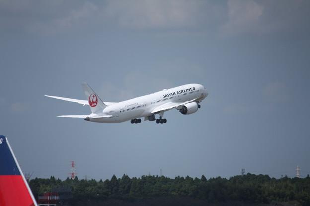 Photos: 日本航空 JAL ボーイング787-9 JA861J (7)