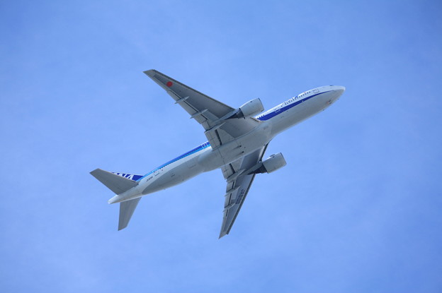 全日空 ANA ボーイング777-200 JA8198 (5)