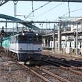 Photos: EF65 2063牽引 貨物列車 (5)