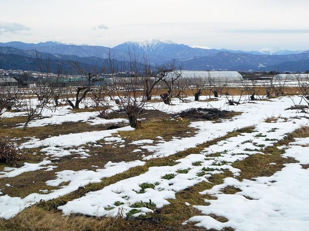 箕輪の冬2016.2-1