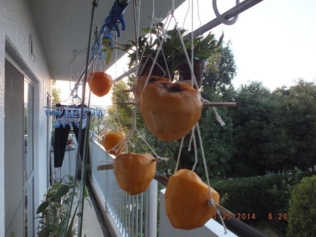 干し柿制作中