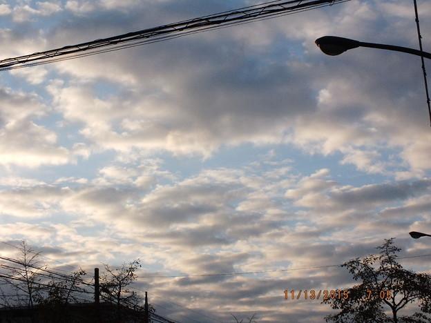空を見ても寒くなってきていますね